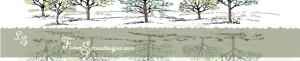 cropped-trees2-002.jpg